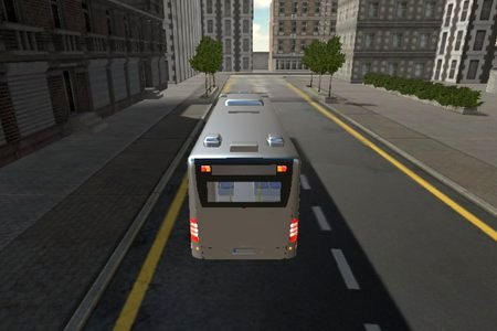 Town Bus Driver